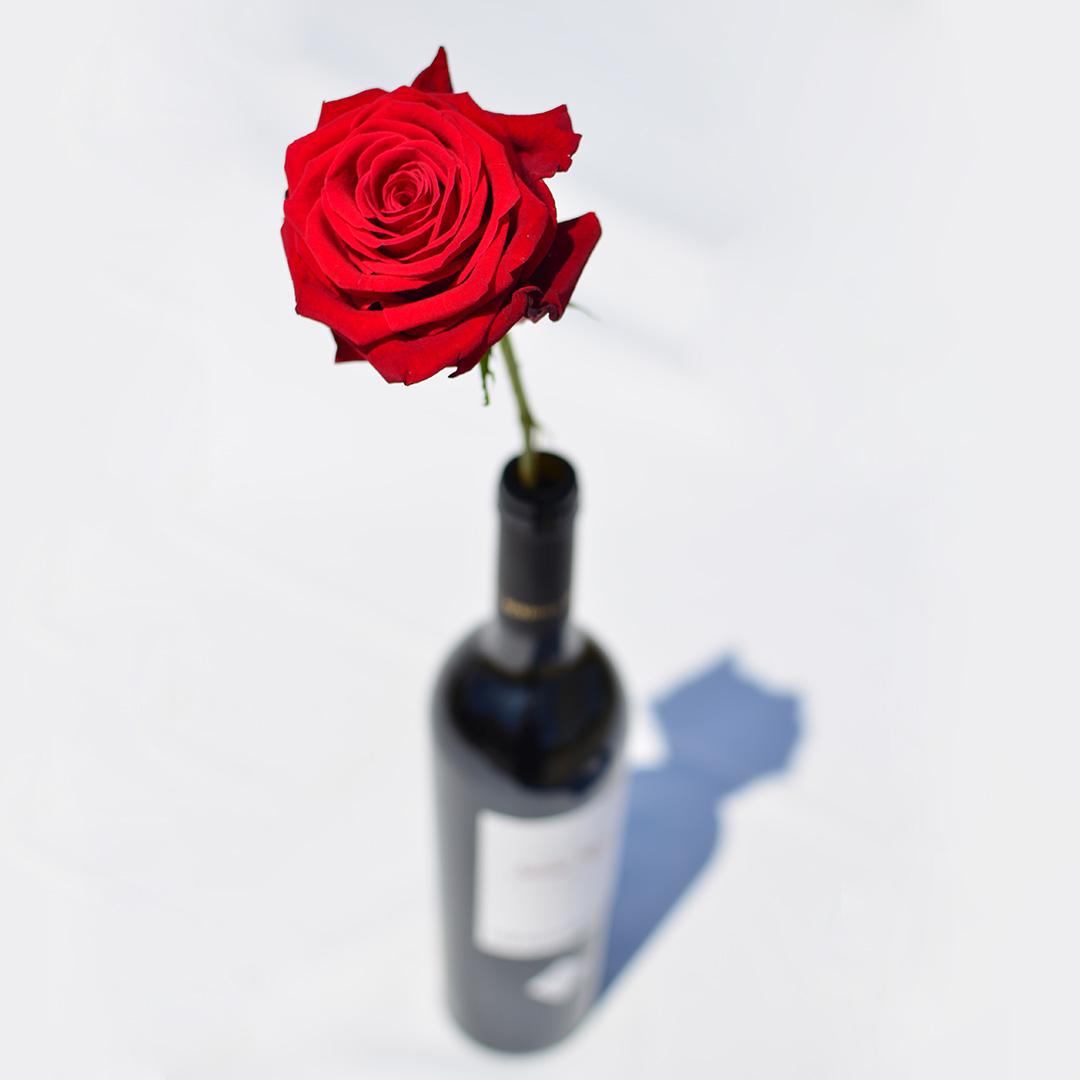 Santa Rosa, un vino inspirado en el amor a una madre